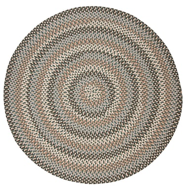 Alcott Hill Lettie Driftwood Teal Area Rug; Round 6'
