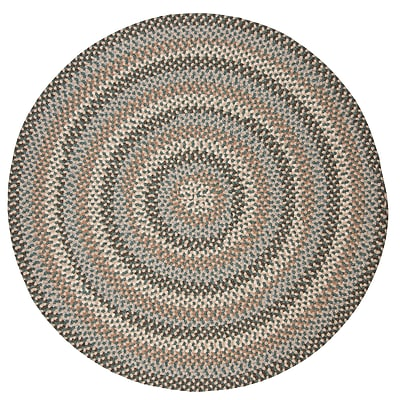 Alcott Hill Lettie Driftwood Teal Area Rug; Round 8'