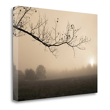 Tangletown Fine Art 'Parish Hill Sunrise' Photographic Print on Wrapped Canvas; 18'' H x 24'' W