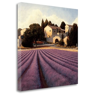 Tangletown Fine Art 'Lavender Fields I' Print on Canvas; 24'' H x 24'' W