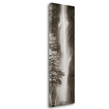 Tangletown Fine Art 'Multnomah Falls Panel' Photographic Print on Wrapped Canvas; 48'' H x 16'' W