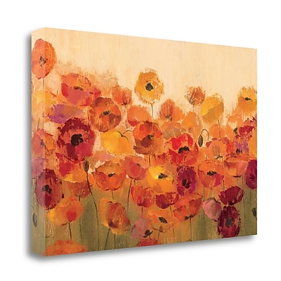 Tangletown Fine Art 'Summer Poppies' Print on Canvas; 17'' H x 34'' W