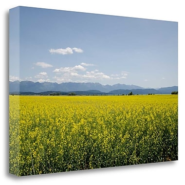 Tangletown Fine Art 'Kalispell, MT' Photographic Print on Canvas; 32'' H x 48'' W