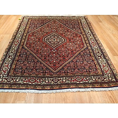 Rug Tycoon Bidjar Iron Hand-Knotted Red Area Rug