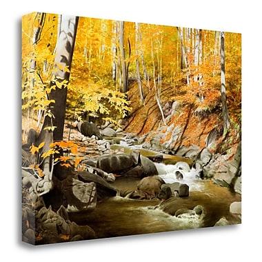 Tangletown Fine Art 'October Creek' Photographic Print on Canvas; 20'' H x 28'' W