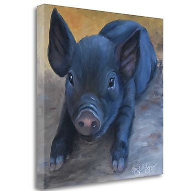 Tangletown Fine Art 'Coles Baby Pig' Print on Wrapped Canvas; 26'' H x 26'' W
