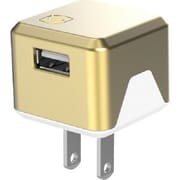 Scosche® SuperCube™ Flip 12 W USB Wall Charger for iPhone 5s, Gold (USBH121)