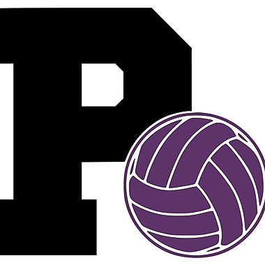 Enchantingly Elegant Letter ''P'' and Volleyball Wall Decal; 22'' H x 31'' W x 1'' D