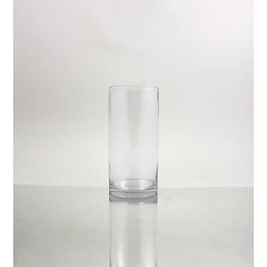 WGVInternational Cylinder Glass Vase; 12'' H x 5'' W x 5'' D