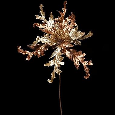 ZiaBella Decorative Metallic Poinsettia; Champagne