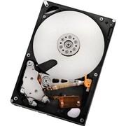 """HGST Deskstar 7K2000 Series SATA 3 Gbps 3.5"""" Internal Hard Drive, 2TB (0F10311)"""