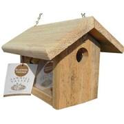 C&S Products Bluebird Hopper Bird Feeder