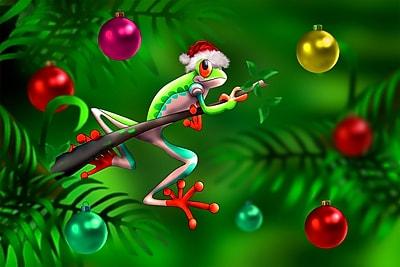 Wallhogs Christmas Frog II Glossy Poster; 24'' H x 36'' W