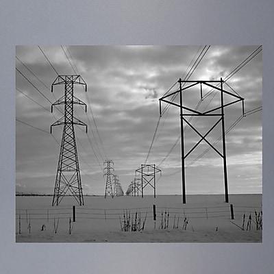 Wallhogs Batie's Power Lines Glossy Poster; 48'' H x 60'' W