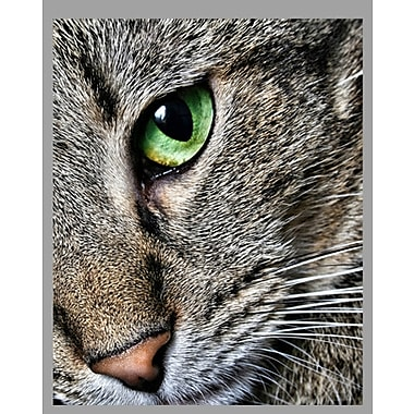 Wallhogs Batie's ''Max Close Up'' Glossy Poster; 48'' H x 60'' W