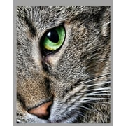 Wallhogs Batie's ''Max Close Up'' Glossy Poster; 28.5'' H x 36'' W