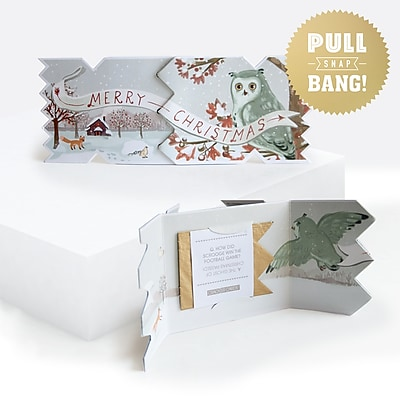 Holiday Cracker Card, Merry Christmas Owl, 8.75