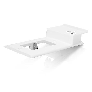 Aluratek 2-Port USB Charging Decor Wall Plate, White (AUWCS02FS)