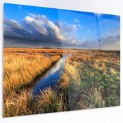 DesignArt 'Beautiful Meadow w/ Blue Sky' Photographic Print on Metal; 12'' H x 28'' W x 1'' D