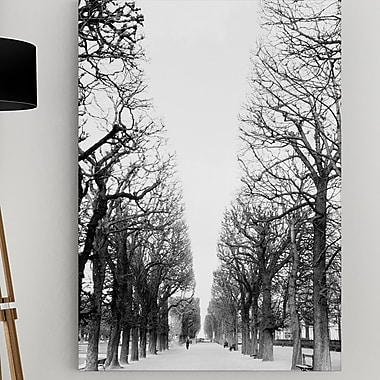 WexfordHome 'French Avenue' by Danita Delimont Framed Photographic Print on Wrapped Canvas