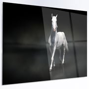 DesignArt 'Isolated Black Horse on Black' Graphic Art on Metal; 12'' H x 28'' W x 1'' D
