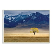 Stupell Industries Open Range Landscape w/ Tree Photographic Print Wall Plaque
