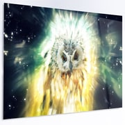 DesignArt 'Owl over Colorful Abstract Image' Graphic Art on Metal; 12'' H x 28'' W x 1'' D