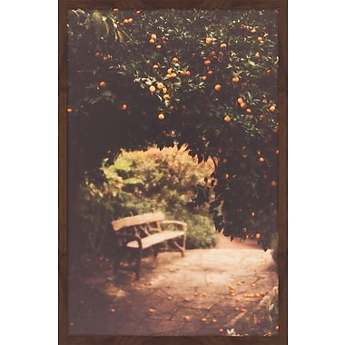 Marmont Hill ''Under the Orange Tree'' by Ann Barnes Framed Photographic Print on Paper
