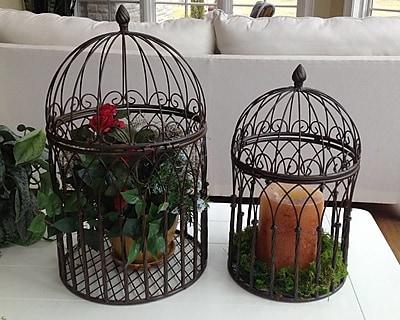 Marshall Home Garden Victorian Cage 2 Piece Iron Terrarium Set