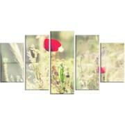 DesignArt 'Meadow w/ Wild Poppy Flowers' 5 Piece Photographic Print on Canvas Set