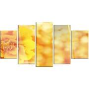DesignArt 'Beautiful Floral Yellow Background' 5 Piece Photographic Print on Canvas Set