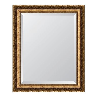 Melissa Van Hise Gold Resin Frame Wall Mirror; 34.5'' H x 28.5'' W x 1.25'' D