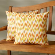 Latitude Run Augusta Indoor/Outdoor Throw Pillow (Set of 2); 20'' H x 20'' W