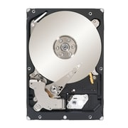 "Seagate  Constellation  SATA 6 Gbps 3.5"" Internal Hard Drive, 2TB (ST32000645NS)"