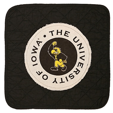 Great Finds University of Iowa Placemat (Set of 4)