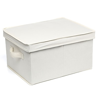 Rebrilliant Storage & Organization Large Storage Box
