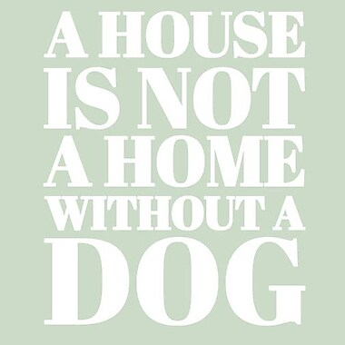 SweetumsWallDecals 'A House is Not a Home Without a Dog' Wall Decal; White