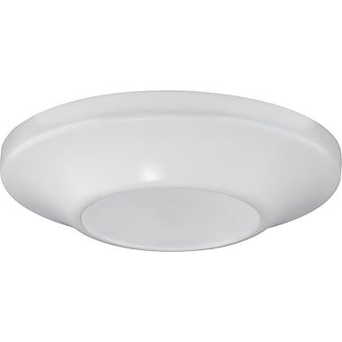 Winston Porter Bolen 1-Light Flush Mount; White