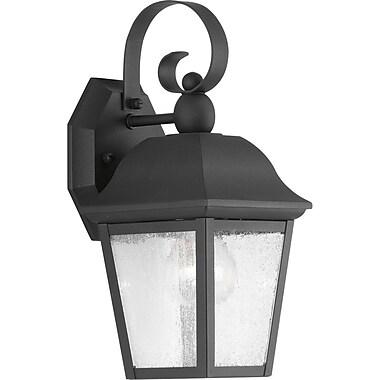 Darby Home Co Ephraim 1-Light Outdoor Wall Lantern