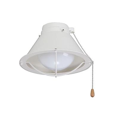 Breakwater Bay 1-Light Globe Fan Light Kit; Summer White