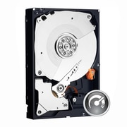 "WD Black SATA 6 Gbps 3.5"" Internal Hard Drive, 3TB (WD3001FAEX)"