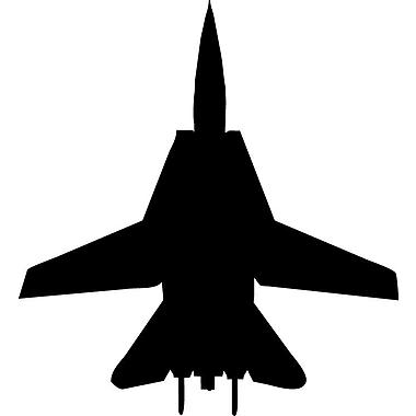 Wallhogs Haynes Silhouette Jet (F14 Tomcat) III Cutout Wall Decal; 36'' H x 33'' W
