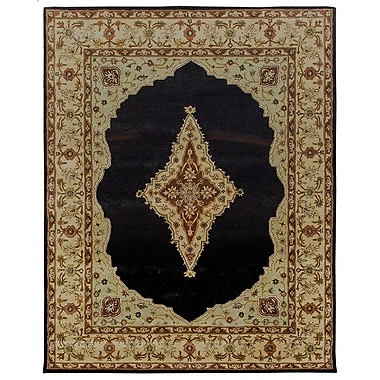 Due Process Stable Trading Co Bidjar Hand-Tufted Midnight/Cream Area Rug; Rectangle 9'6'' x 13'6''