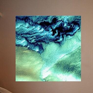 Wallhogs Buell Aleutian Cloud Cover Wall Mural; 36'' H x 36'' W
