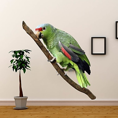 Wallhogs Parrot II Cutout Wall Decal; 72'' H x 25'' W
