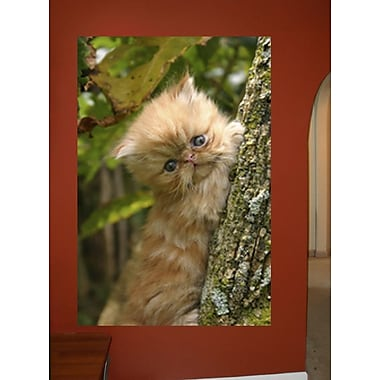 Wallhogs Cat I Wall Decal; 24'' H x 16'' W
