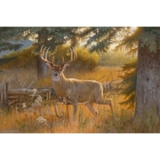 ReflectiveArt 'A Grand Entrance' Print of Painting on Wrapped Canvas