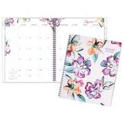 At A Glance – Agenda hebdomadaire/mensuel, collection juin, grand, anglais