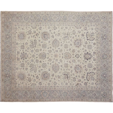 Darby Home Co Leann Hand-Knotted Oriental Rectangle Ivory Indoor Area Rug