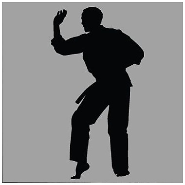 Wallhogs Martial Arts Kata II Silhouette Cutout Wall Decal; 24'' H x 13'' W